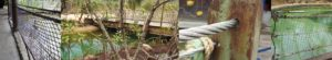 Verwerking RVS staalkabels Mangrove-verblijf Burgers Zoo in Arnhem