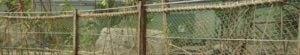RVS staalkabels Mangrove-verblijf Burgers Zoo in Arnhem