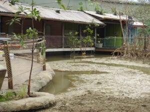 RVS staalkabels gecombineerd met touwnetten in mangrove-verblijf Burgers Zoo