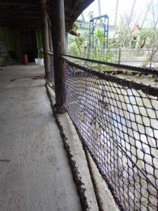 RVS staalkabel 16mm mangrove-verblijf Burgers Zoo