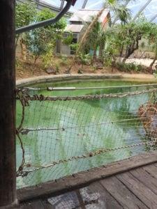 Verwerking RVS staalkabels in touwnetten mangrove-verblijf Burgers Zoo